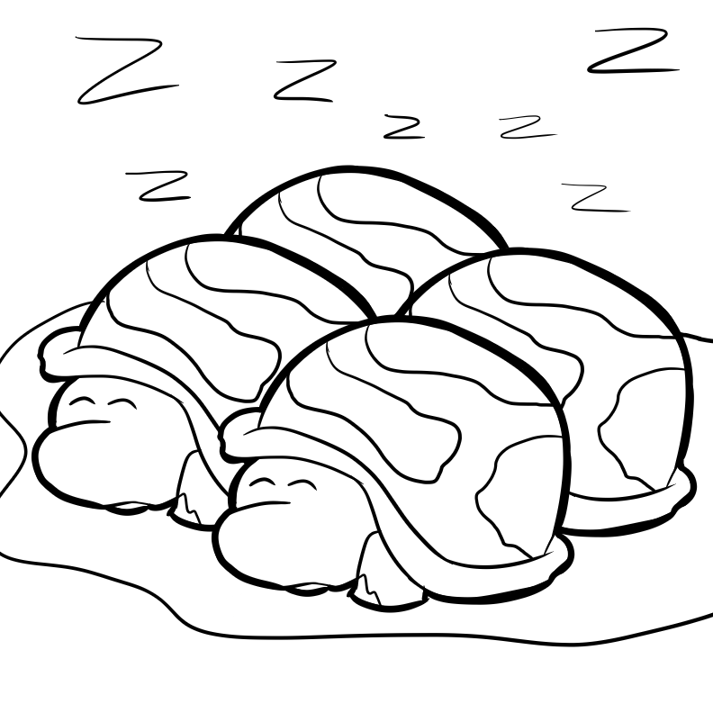 Bug Museum - Reptile Coloring Pages - Turtles (15)