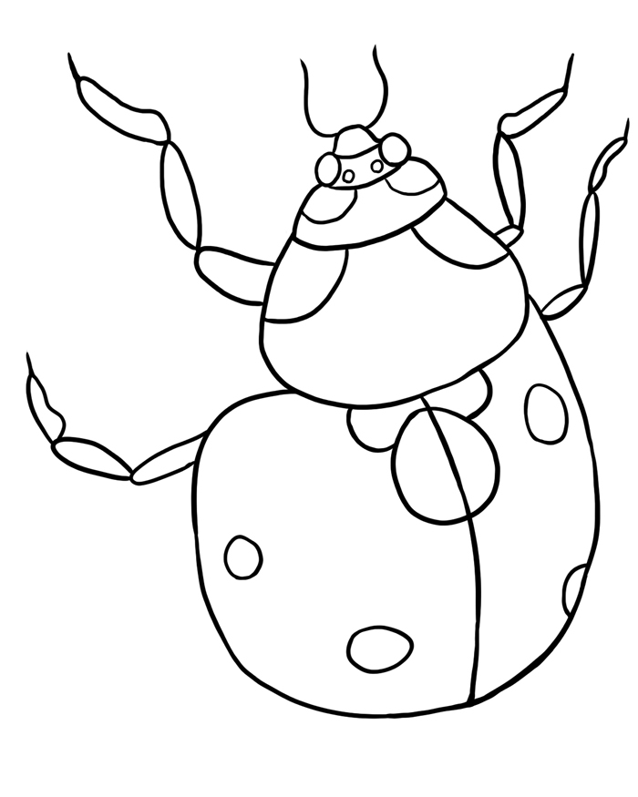 return to bug coloring pages section ladybug - Bug Coloring Pages