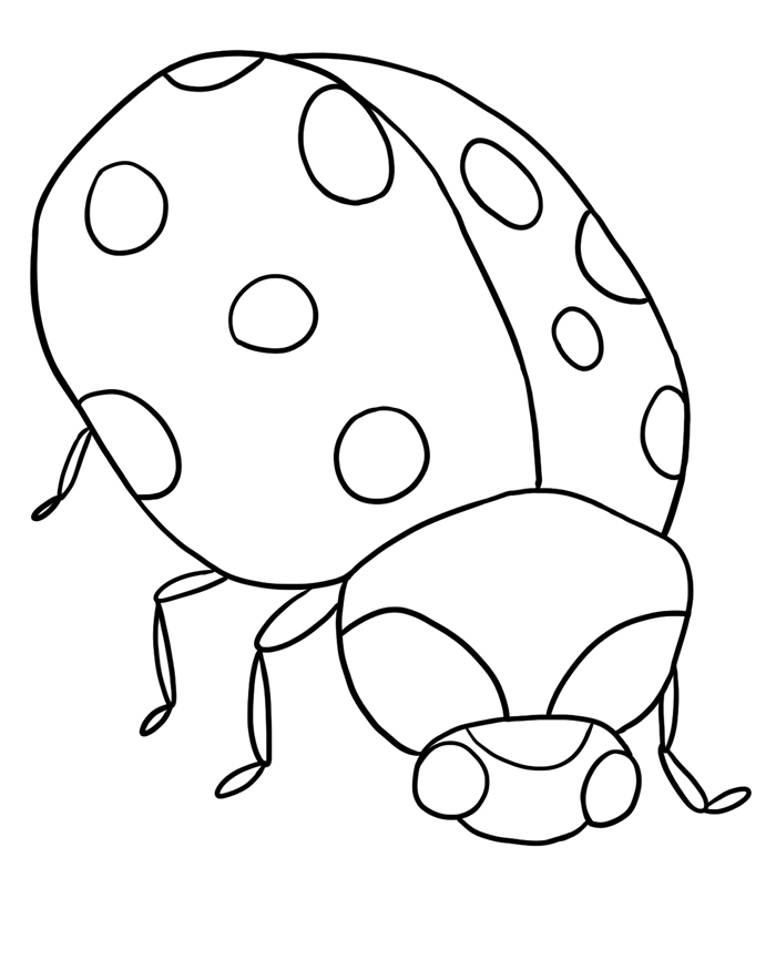 return to bug coloring pages section ladybug