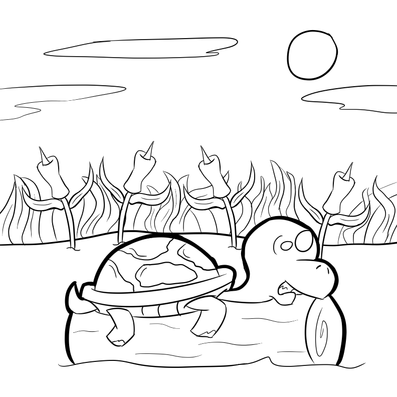 Turtles coloring pages   Free Coloring Pages   792x792